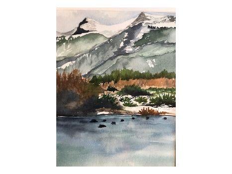 """""""Coots on Freel Peak Pond"""""""