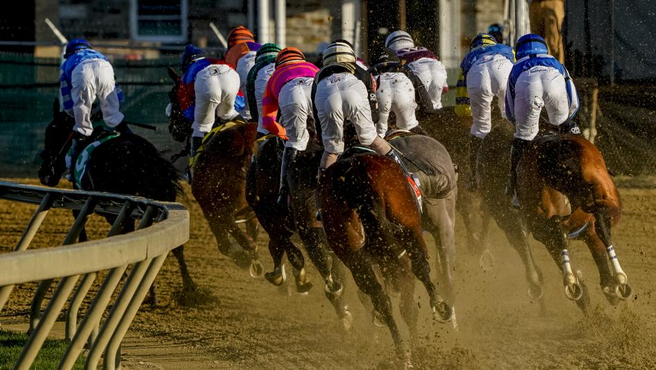preakness stakes 2021 betting picks