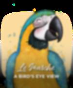 <p><strong>Le Marche: A Bird's Eye View</strong></p>