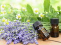 Private Herbal Medicine Class