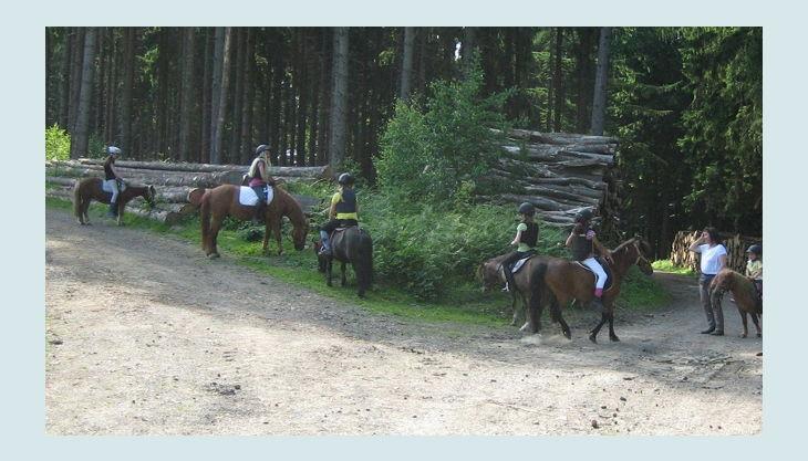 ponnyland a reiten im wald