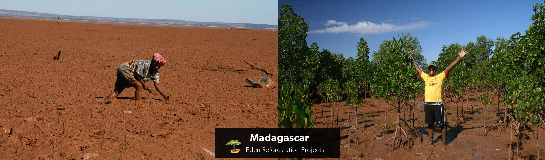 madagaskar-vorher-nachher