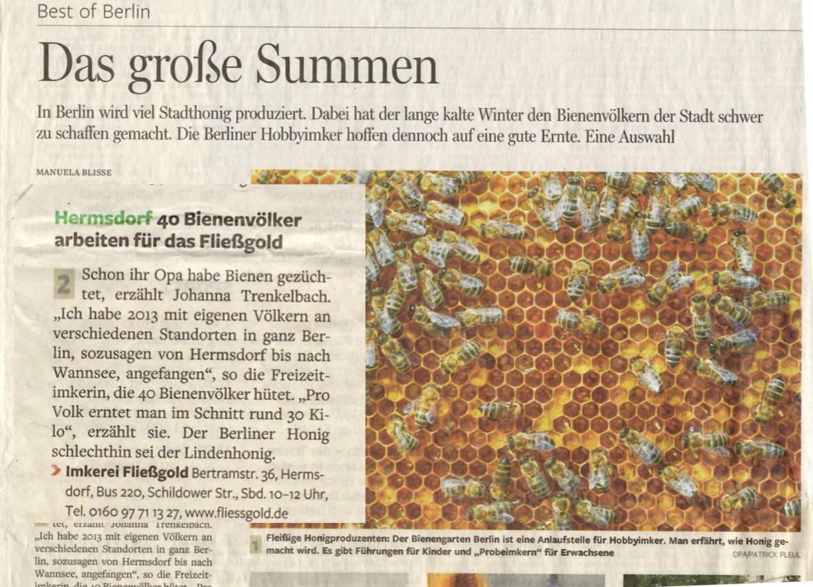 Artikel in der Berliner Morgenpost über die Bio-Imkerei Fließgold