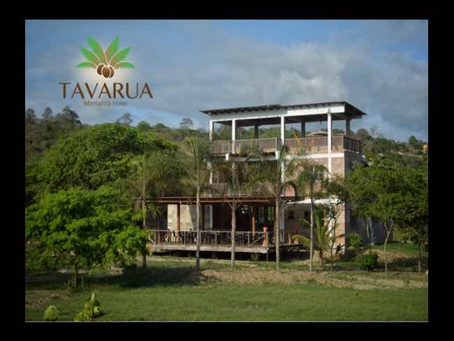 TAVARUA Hotel - Great location and very cheap!-Montañita