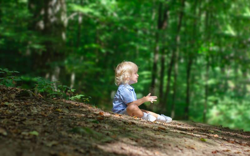 Gyerek az erdőben