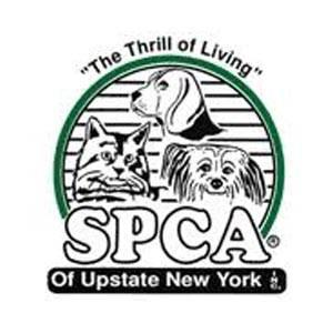 spca of upstate new york