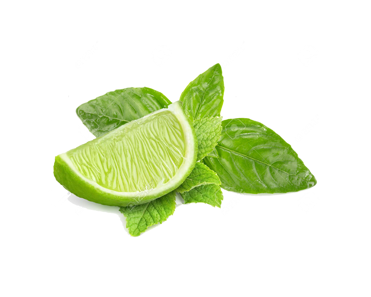 Lime Basil Snough