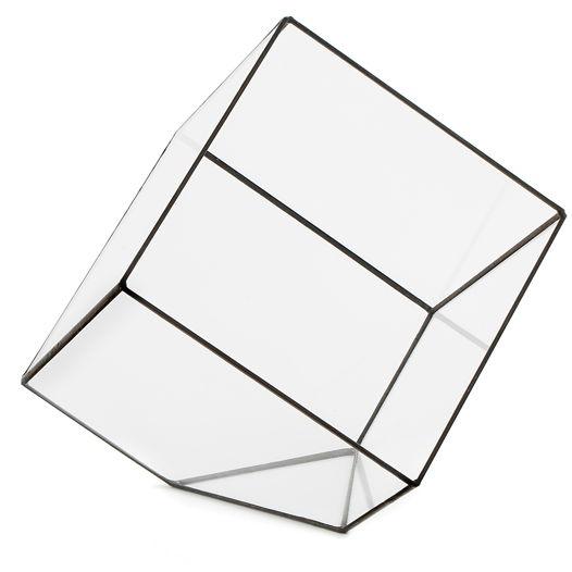 Флорариум Куб пустой