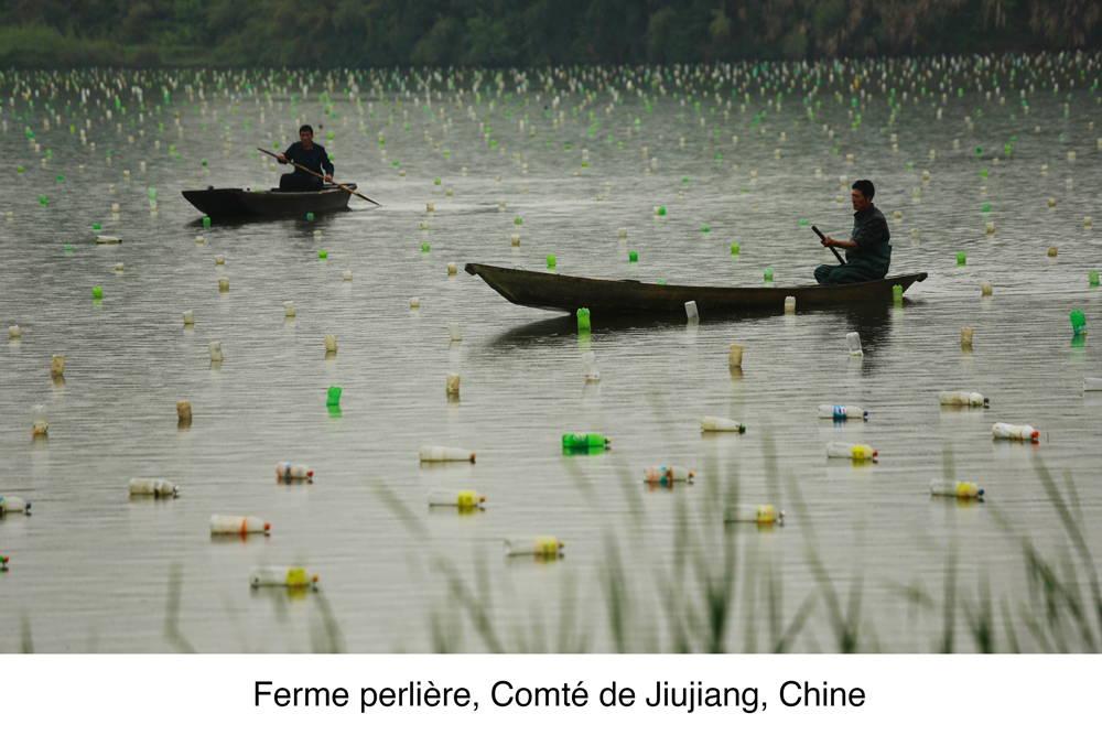 Deux cultivateurs de perles chinois se promènent sur leur bateau et observent leur culture de perles