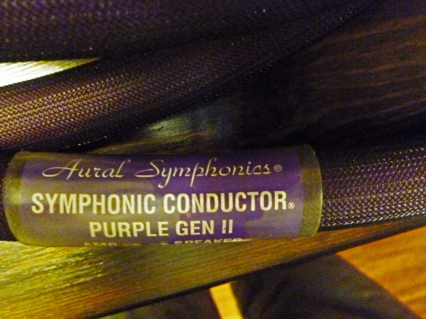 Aural Symphonics Purple Gen II