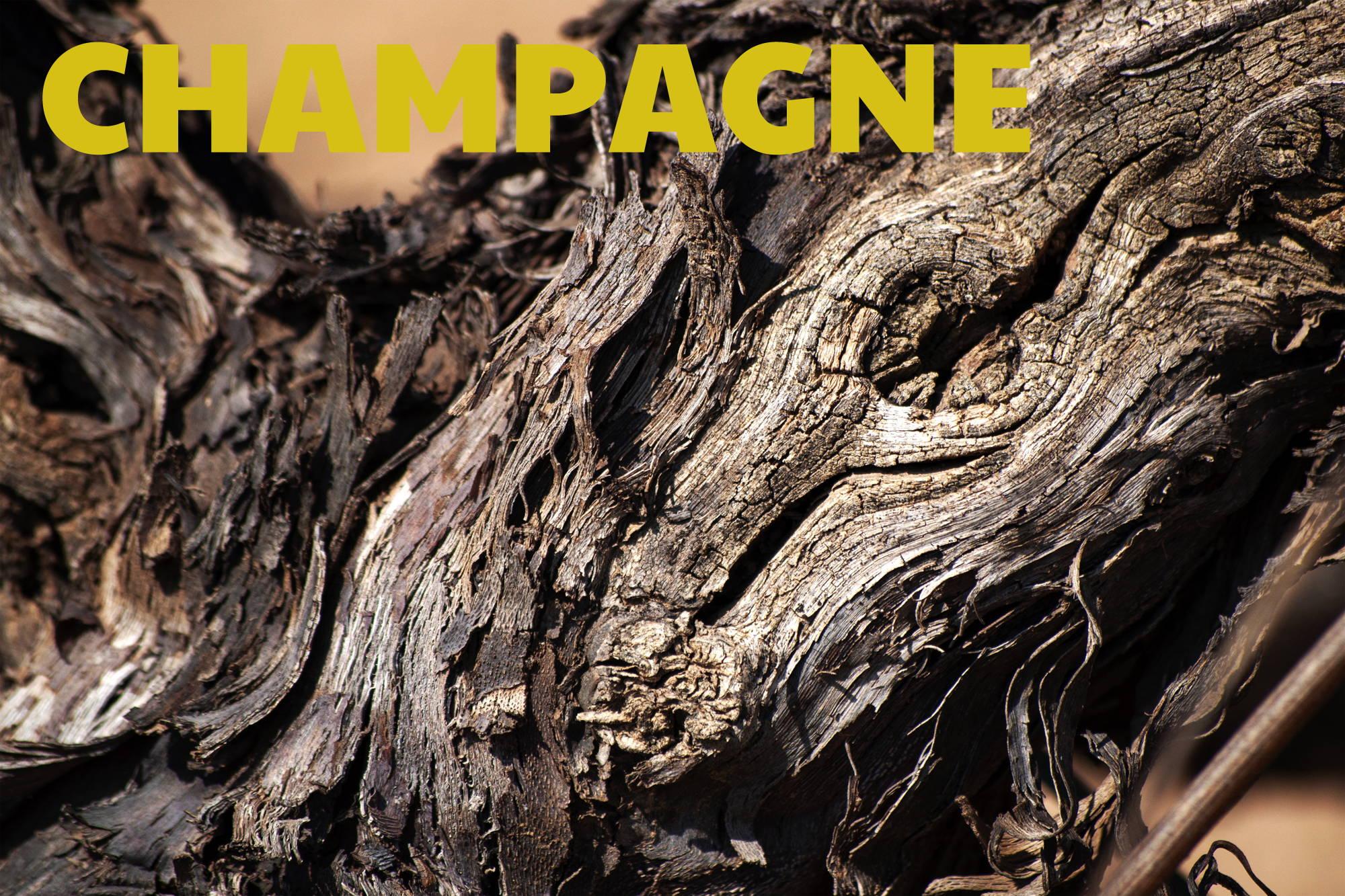 France, vin nature, rawwine, organic wine, vin bio, vin sans intrants, bistro brute, vin rouge, vin blanc, rouge, blanc, nature, vin propre, vigneron, vigneron indépendant, domaine bio, biodynamie, vigneron nature, cave vin naturel, cave vin, caviste, vin biodynamique, bistro brute, Quimper, Finistère , champagne, herve rafflin