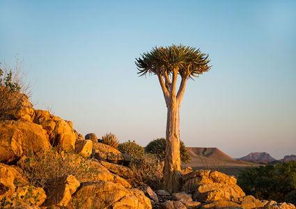 namibia-tours