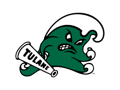 Tulane Football Game Day Package