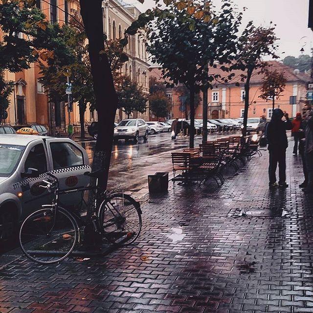 andreea goia - rainy.jpg