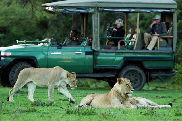 Masai Mara adventure safari, 4 days/3 nights