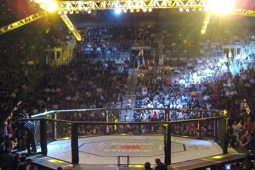 UFC 267 Betting Preview