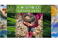 Indigo Nature Arts Junior Counselor Camp