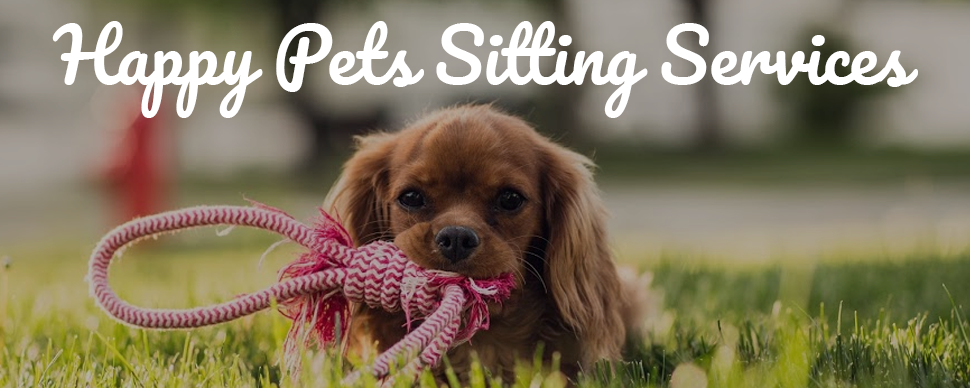 Happy Pets Sitting Services
