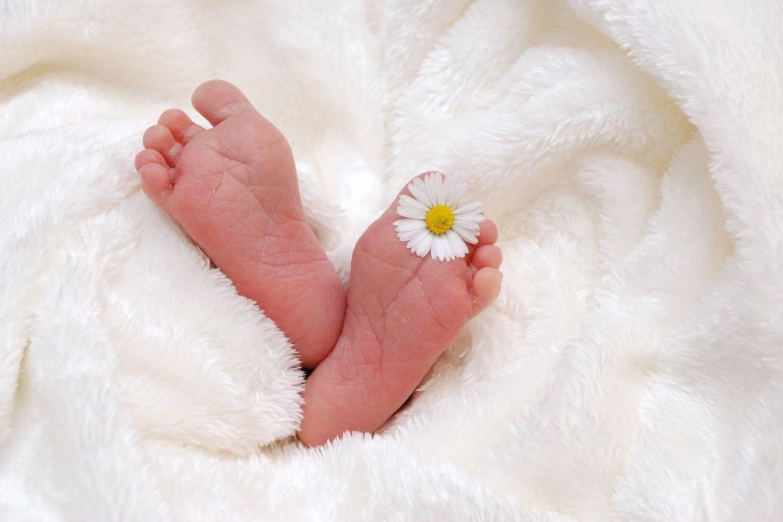 newborn photography essentials