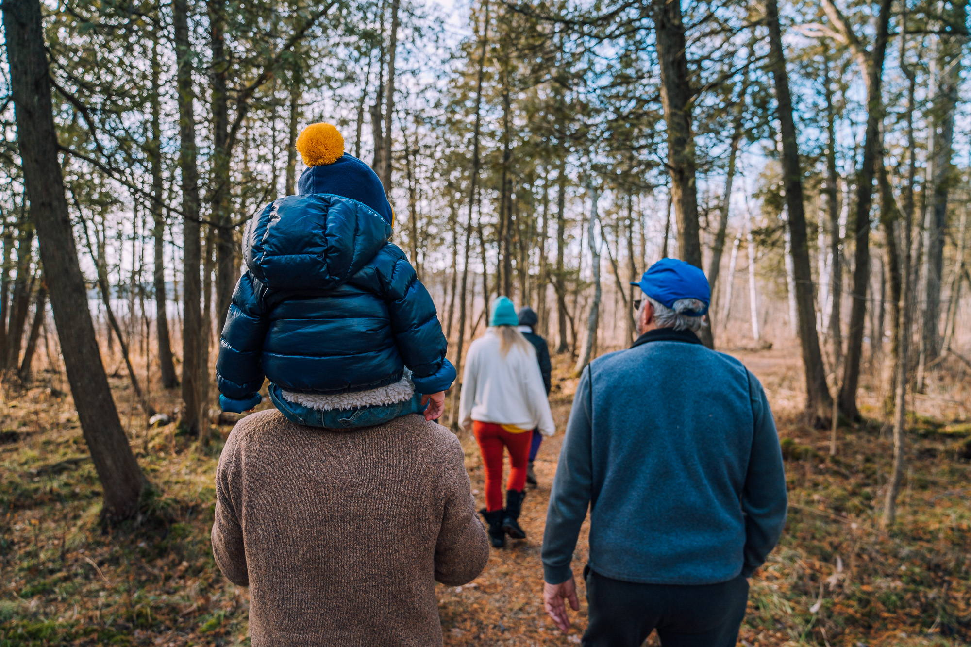 Father son forest walk John Suhar