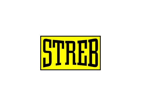STREB - 1 Adult Pop Action Class