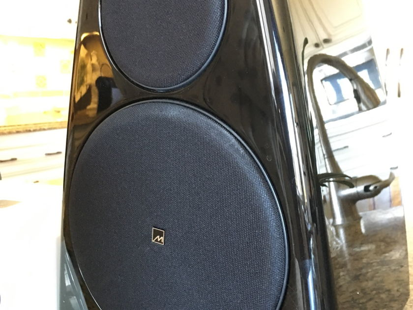 Meridian System AC 200 and DSP 3200 Speakers