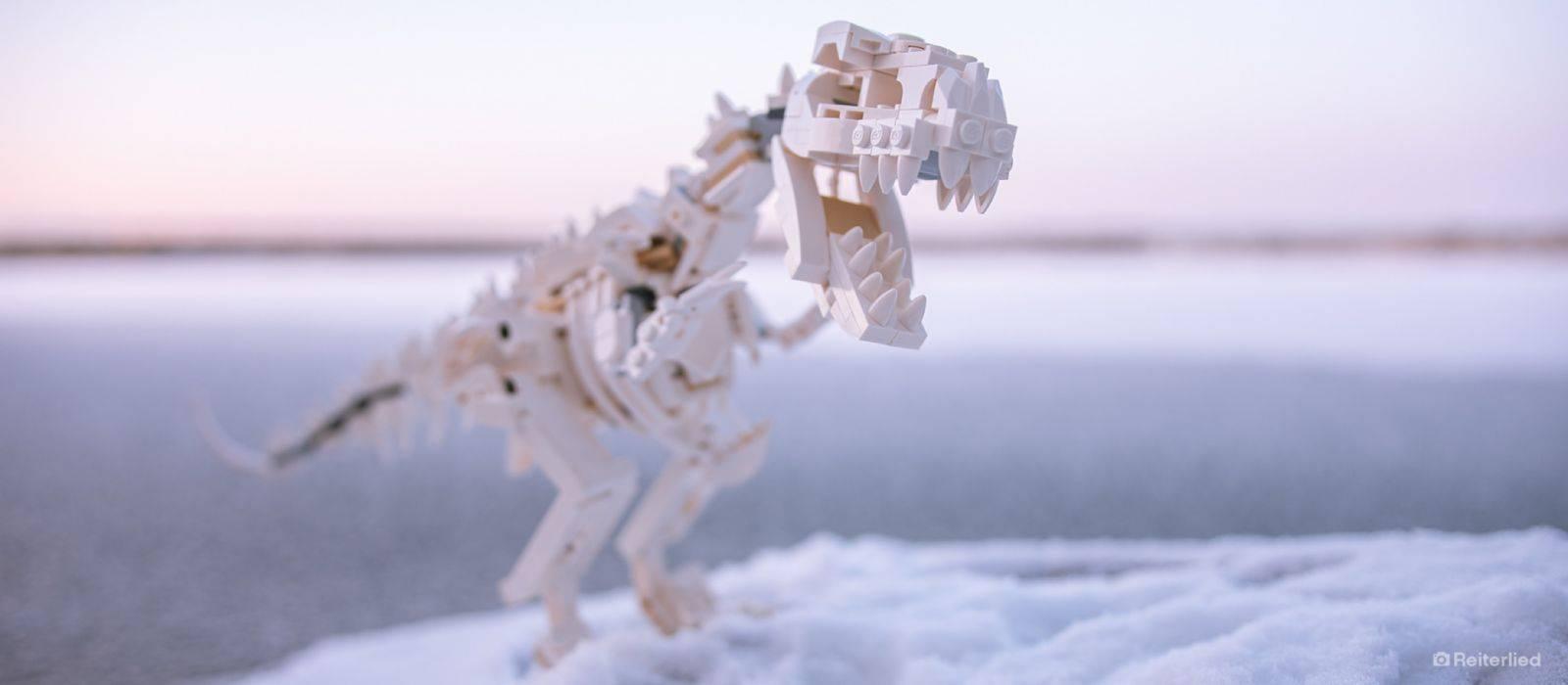 LEGO Dinosaur Fossils 21320