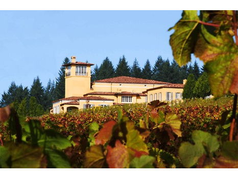 Domaine Serene Winery  Exquisite Oregon Wine Experience for 4