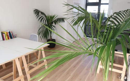 Clean, Professional Space In Auckland Central On Upper Symonds Street - 0