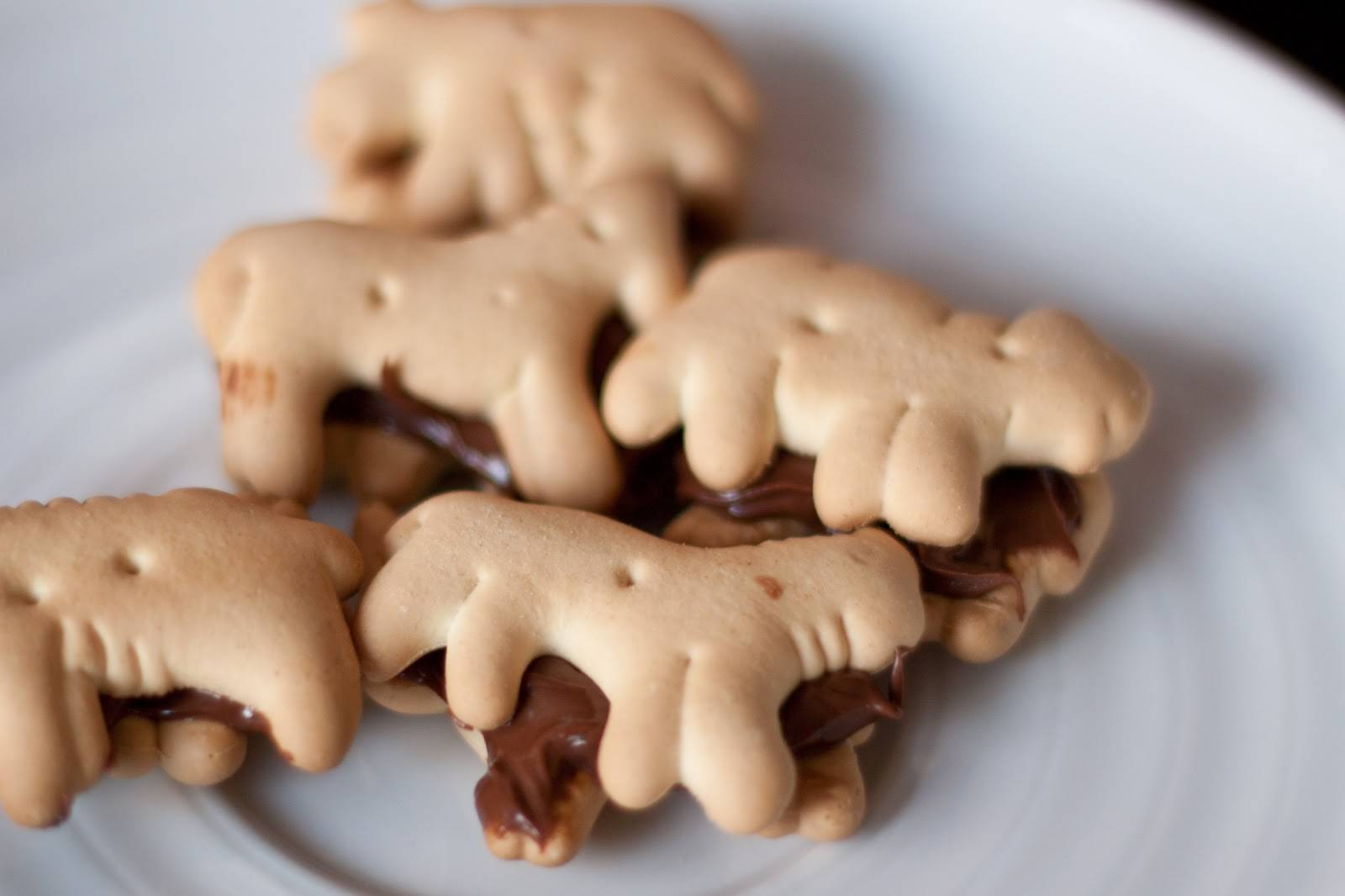 Animal Nutella Firecrackers Recipe