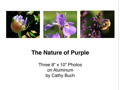 The Nature of Purple