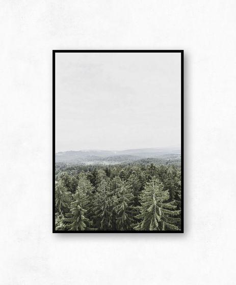 Скандинавский постер с лесом