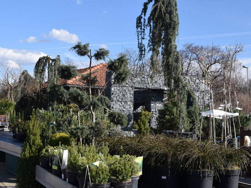 Zahradnické centrum Brabec