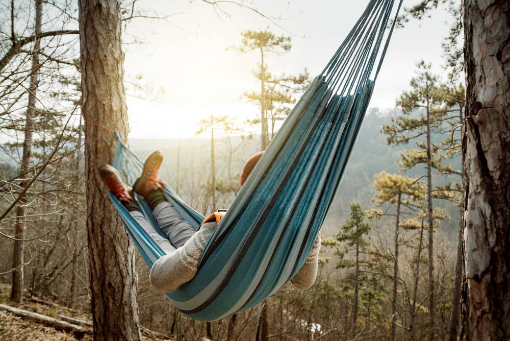 Person lying in hammock looking out at the forest