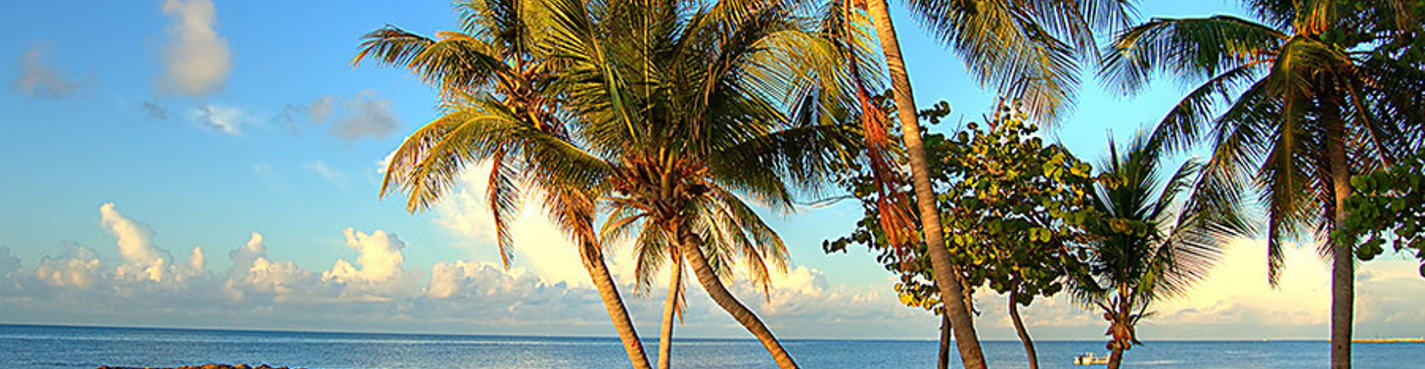Тур-экскурсия из Майами на Ки Вест