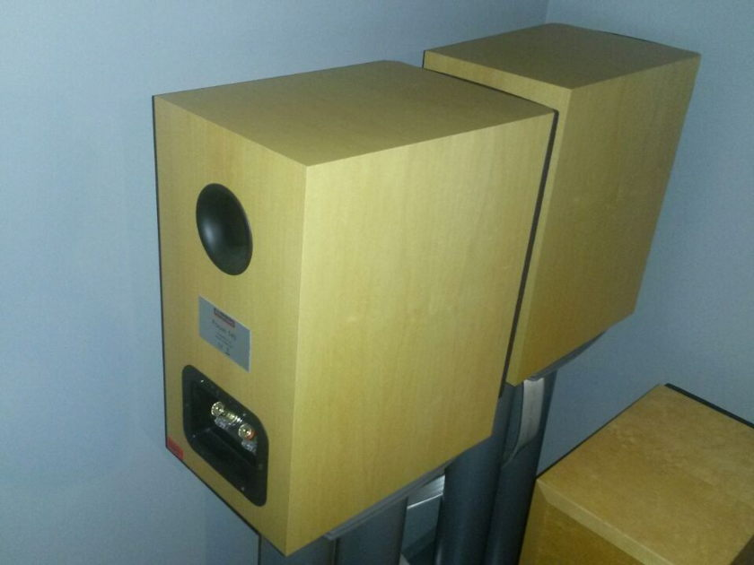 Dynaudio Focus 140 Maplewood