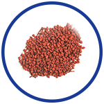 Annatto Seed for Relieving Pain