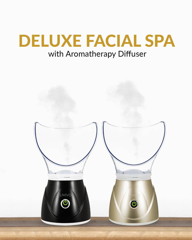 Deluxe Facial Spa Steamer