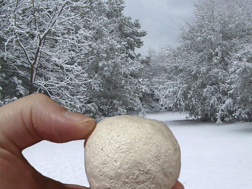 Coconut-Audio Snowball (freeze the noise!)