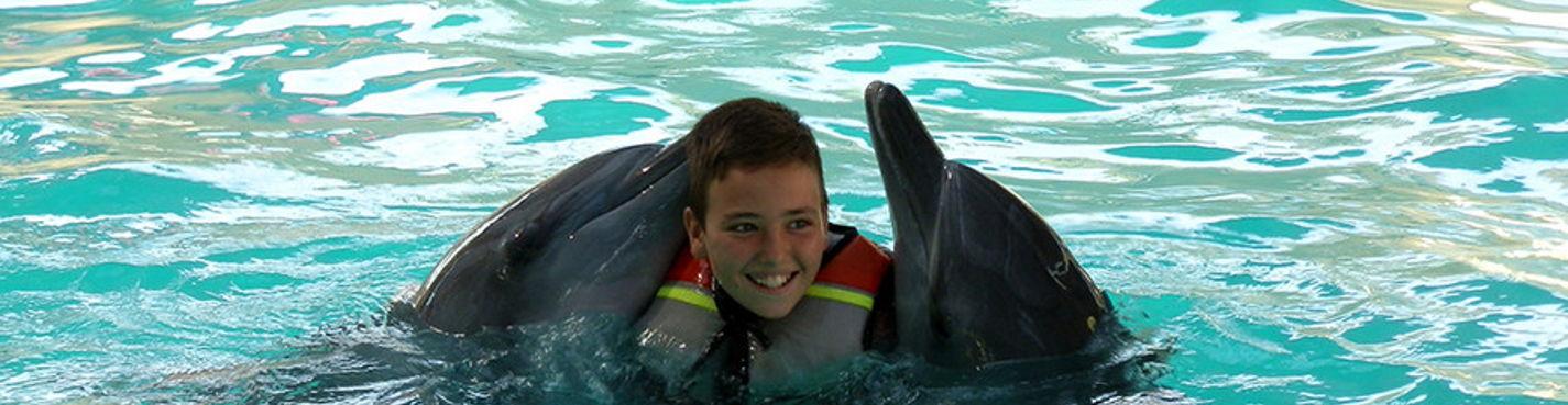 Рассвет с дельфинами (мин.2 чел)