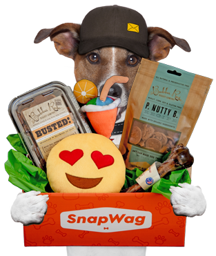 SnapWag Dog Food, Toys, Treats Delivery