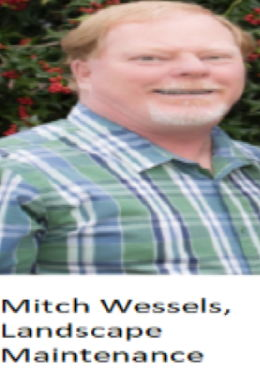 Mitch Wessels.png