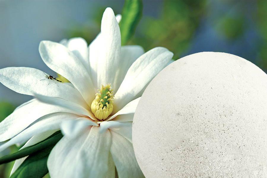 Nourishing Bath Bomb Magnolia 170g