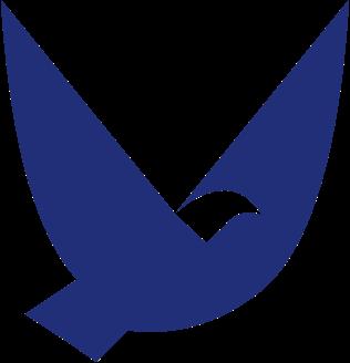 Bird Level Logo