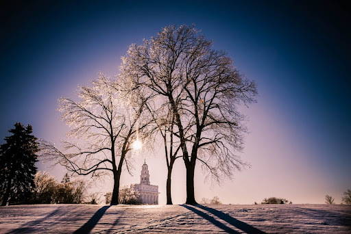 Nauvoo Temple beneath wintery trees, surrounded by snowfall.