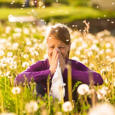 allergie respiratoire anti pollen