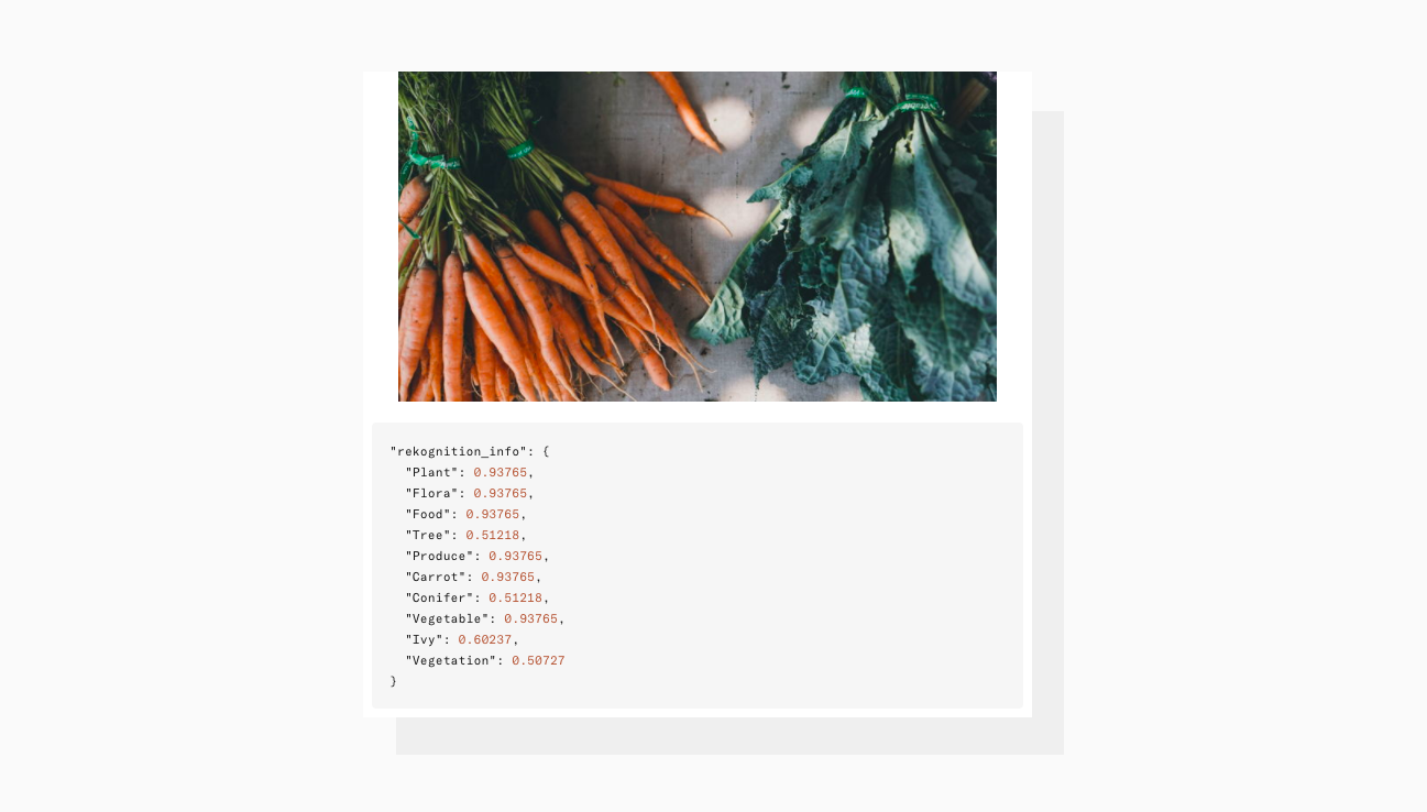 For example a carrot is easily identified as a plant with Uploadcare Object Recognition tool.