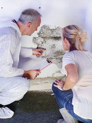 Mold & Mycotoxins – What You Can't Smell Could Be Harming You -
