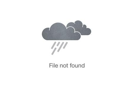 Dog Sledding under the Northern Light
