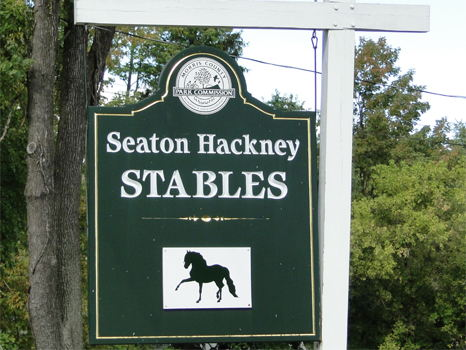 Three Horseback Riding Lessons at Seaton Hackney Stables